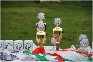 Pokale VSA 2011